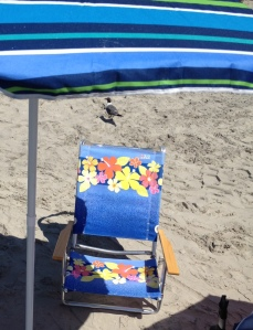 Beach Setup