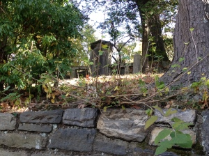 An old gravestone standing just beyond a stone wall along the cemetery driveway.