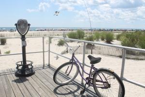 Bike Beach View