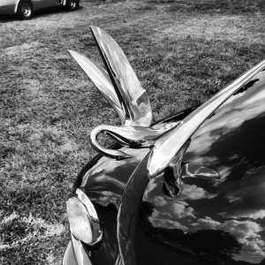 Hood-Ornament-BW