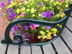 Wash St Mall Floral Bench